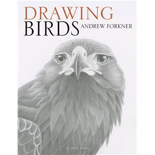 KNJIGA DRAWING BIRDS