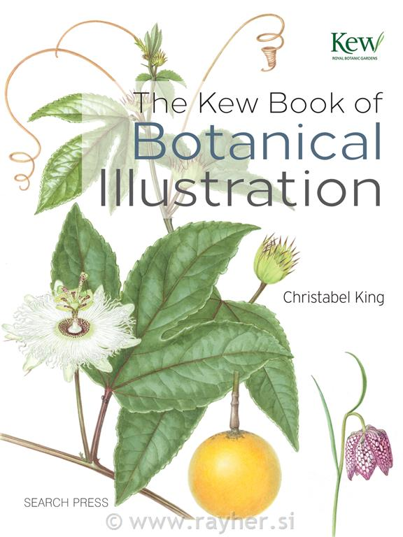 KNJIGA BOTANICAL ILLUSTRATION
